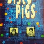 disco-pigs